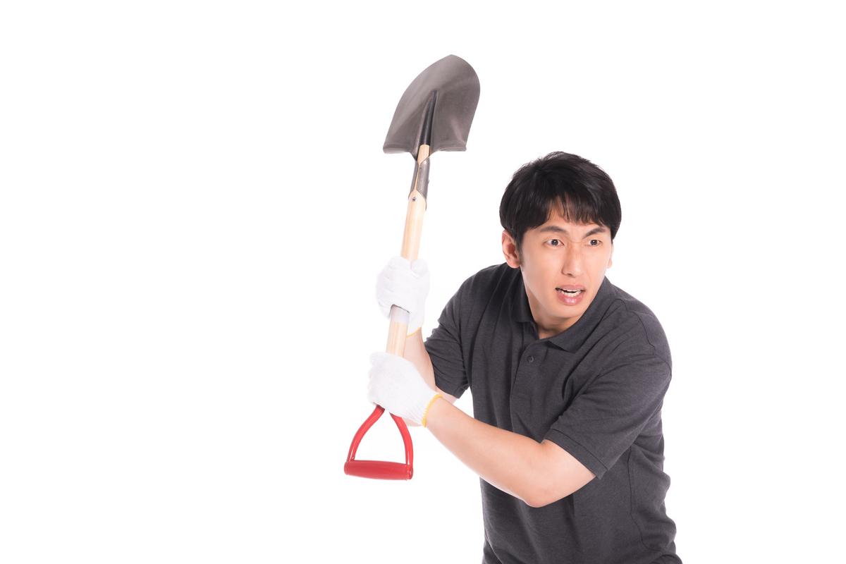 f:id:dokudamiyoshiko:20200809174207j:plain