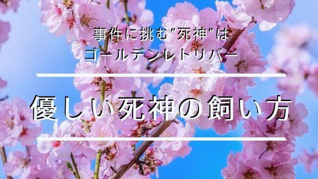 f:id:dokusho-suki:20200105101028j:plain
