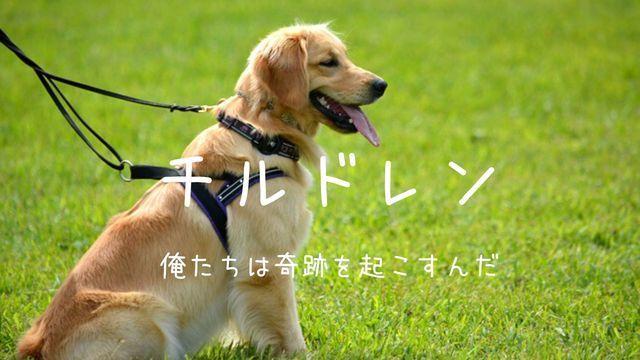 f:id:dokusho-suki:20200604123202j:plain