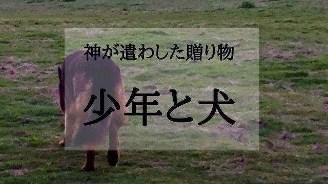 f:id:dokusho-suki:20210214212927j:plain