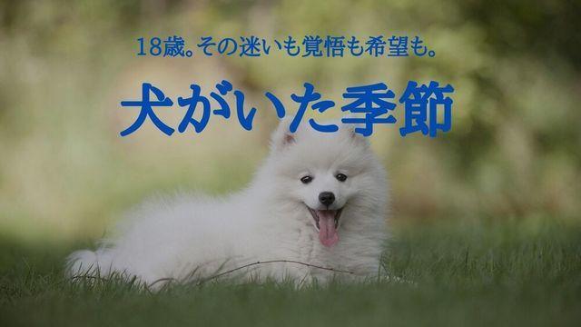 f:id:dokusho-suki:20211009084112j:plain