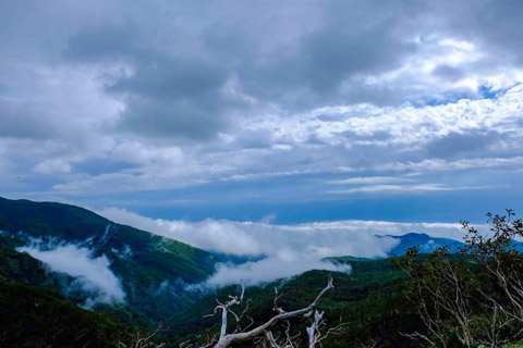 知床峠の雲海