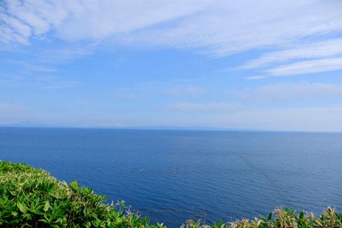 クジラの見える丘公園眺望