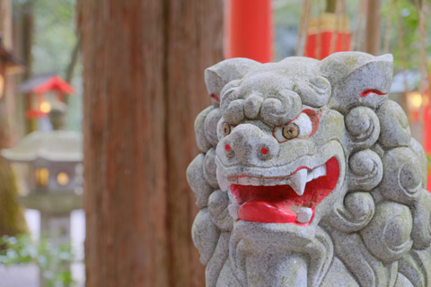 別宮椿岸神社の狛犬