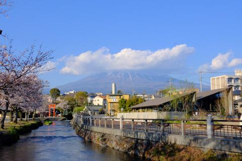 浅間大社から望む富士山