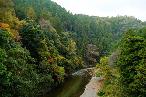多良峡 釣り橋からの景観