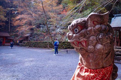貴船神社奥宮の狛犬