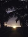 西表島の夕陽