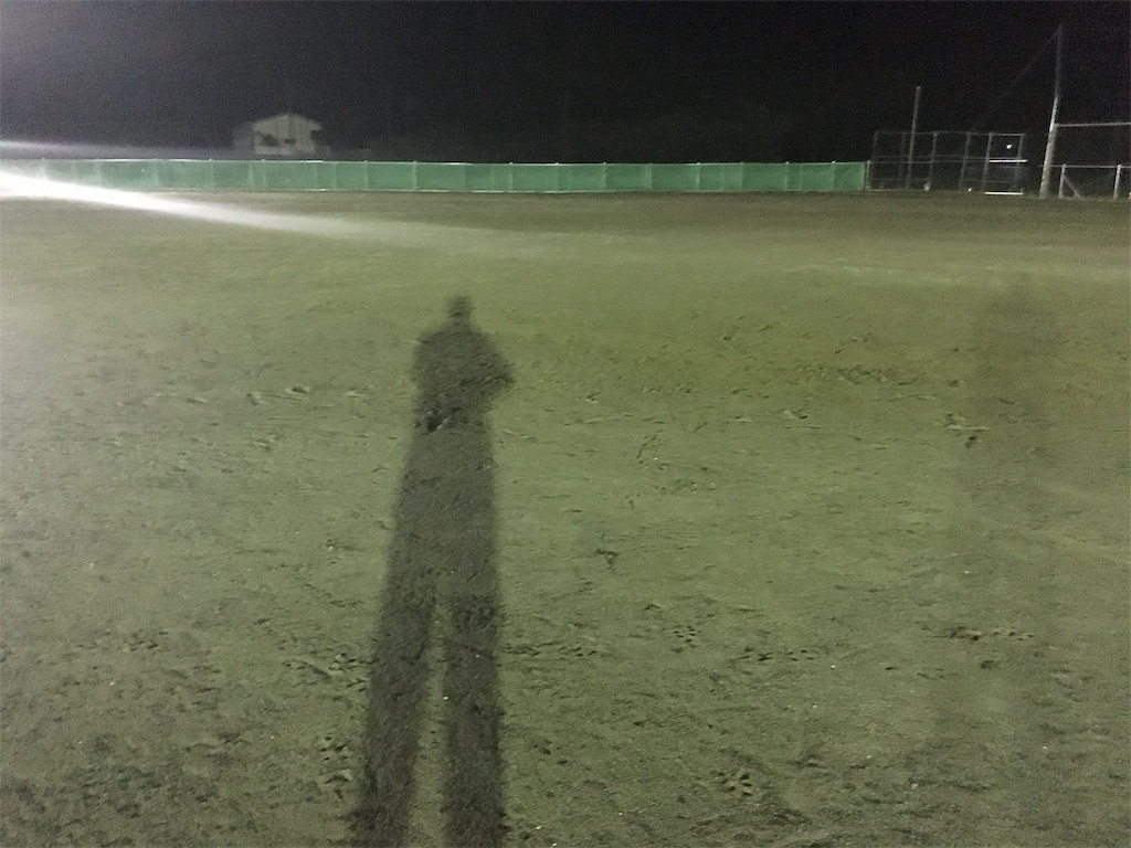 f:id:donagaojisan:20190611215850j:image