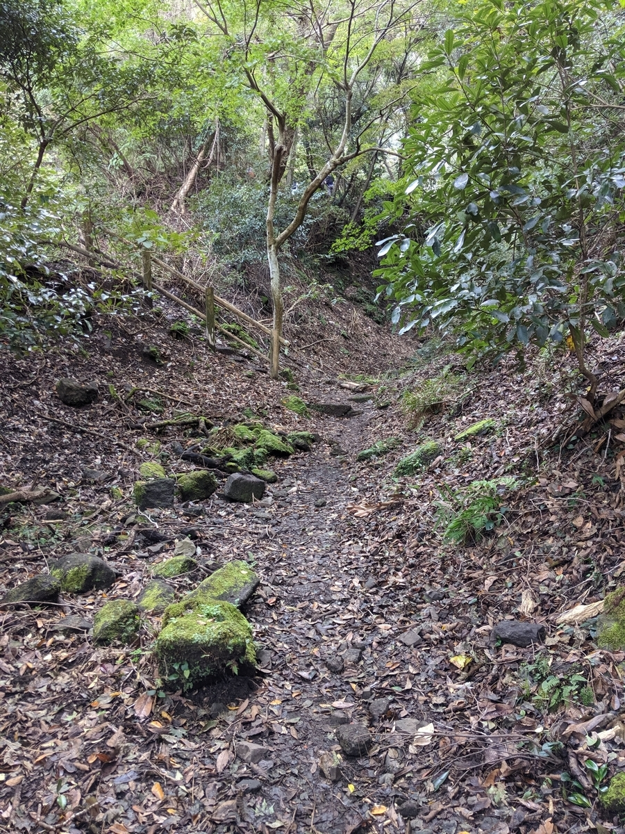 鋸山 山道