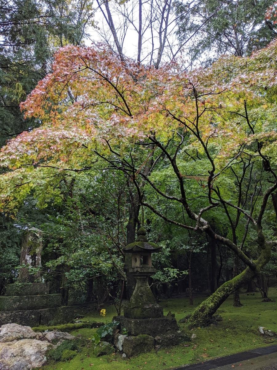 竹林寺写真