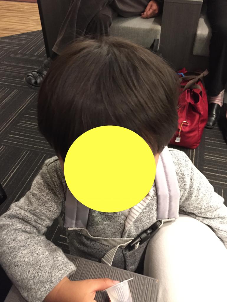 f:id:donburi-kun:20170815135731p:plain