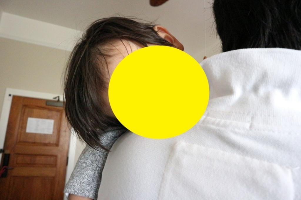 f:id:donburi-kun:20170816174531j:plain