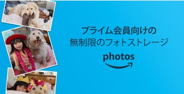 f:id:donguri-Genie:20191204144850j:image