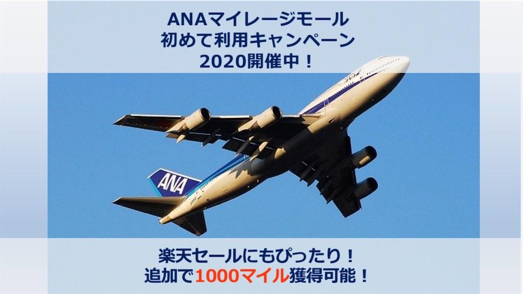f:id:donguri-Genie:20200325114909j:image