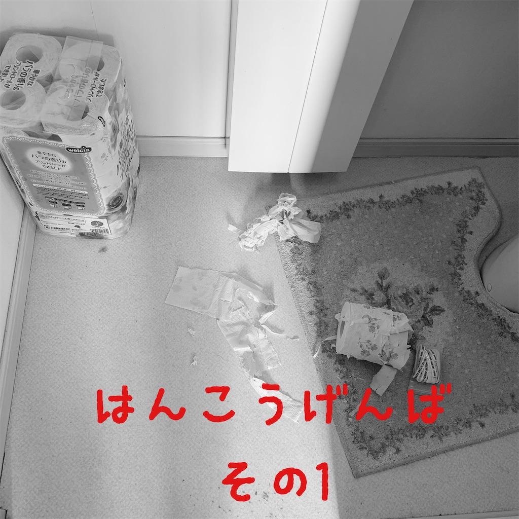 f:id:donkilovsurf:20210216235400j:image