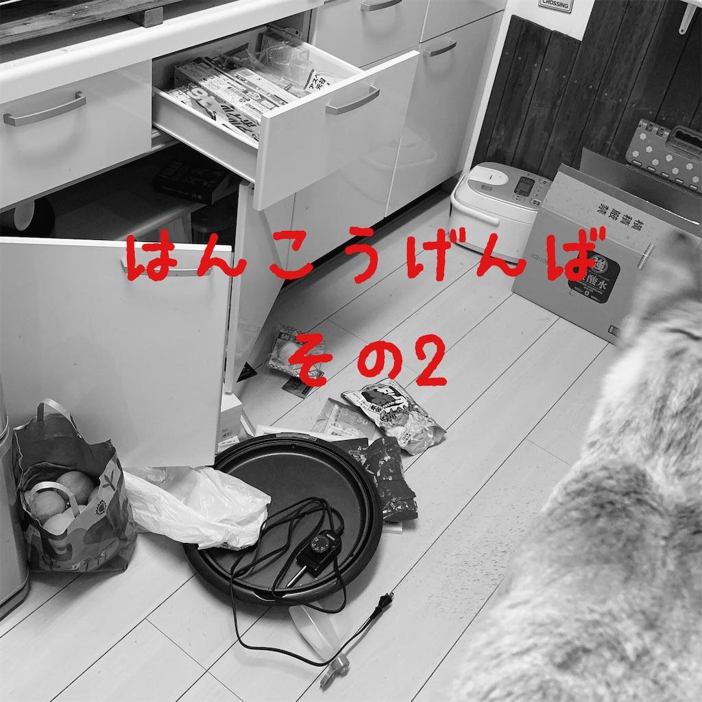 f:id:donkilovsurf:20210216235404j:image