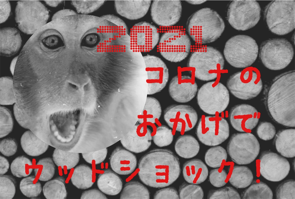 f:id:donkilovsurf:20210429014257j:image