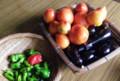 我が家の夏野菜、何故か今年はきゅうりが採れない