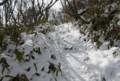 地蔵岳の山道。雪のスロープ