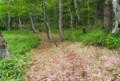 手軽に、本当に快適な森林歩きが味合えます