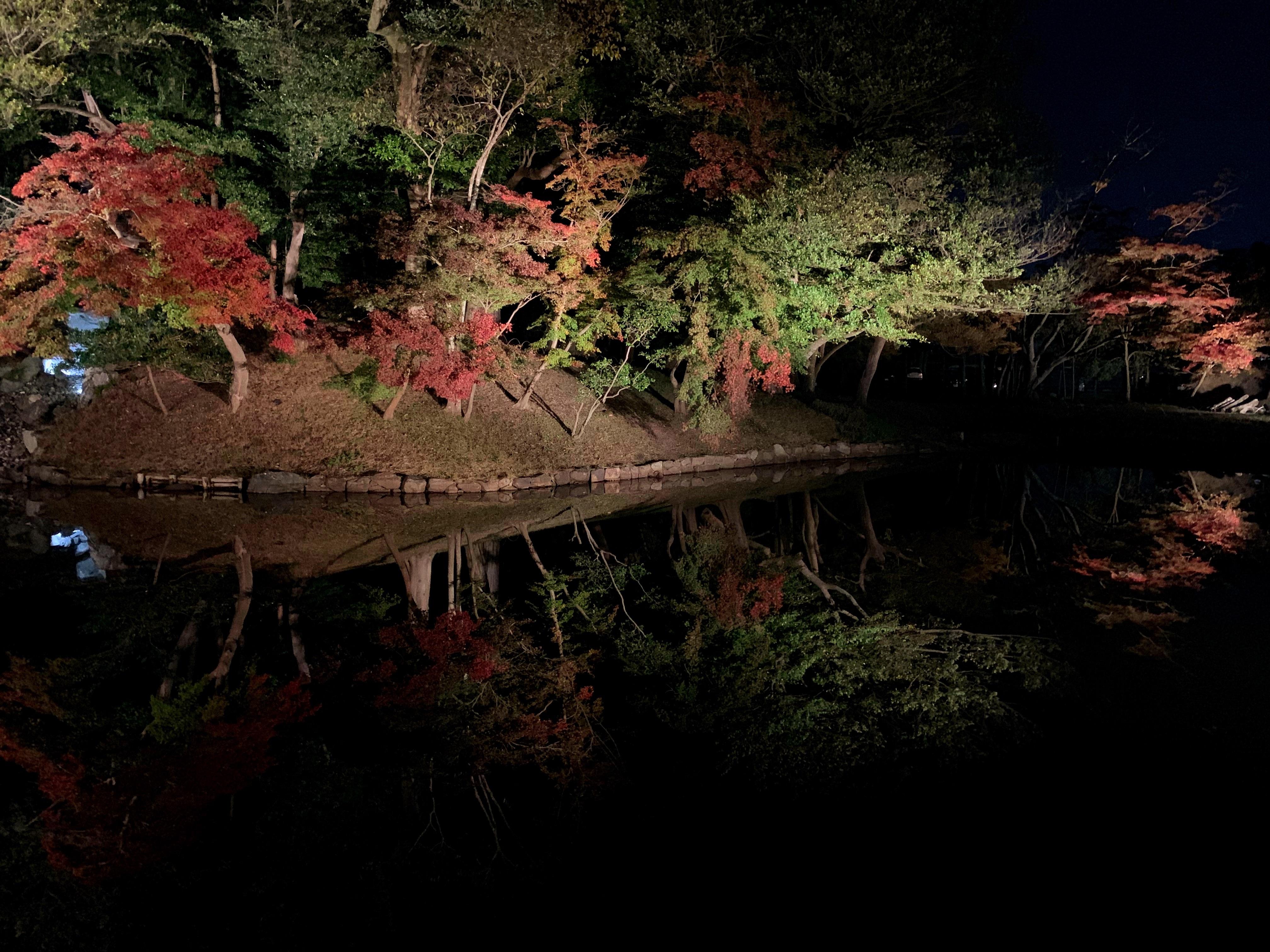 紅葉に染まる夜の玄宮園
