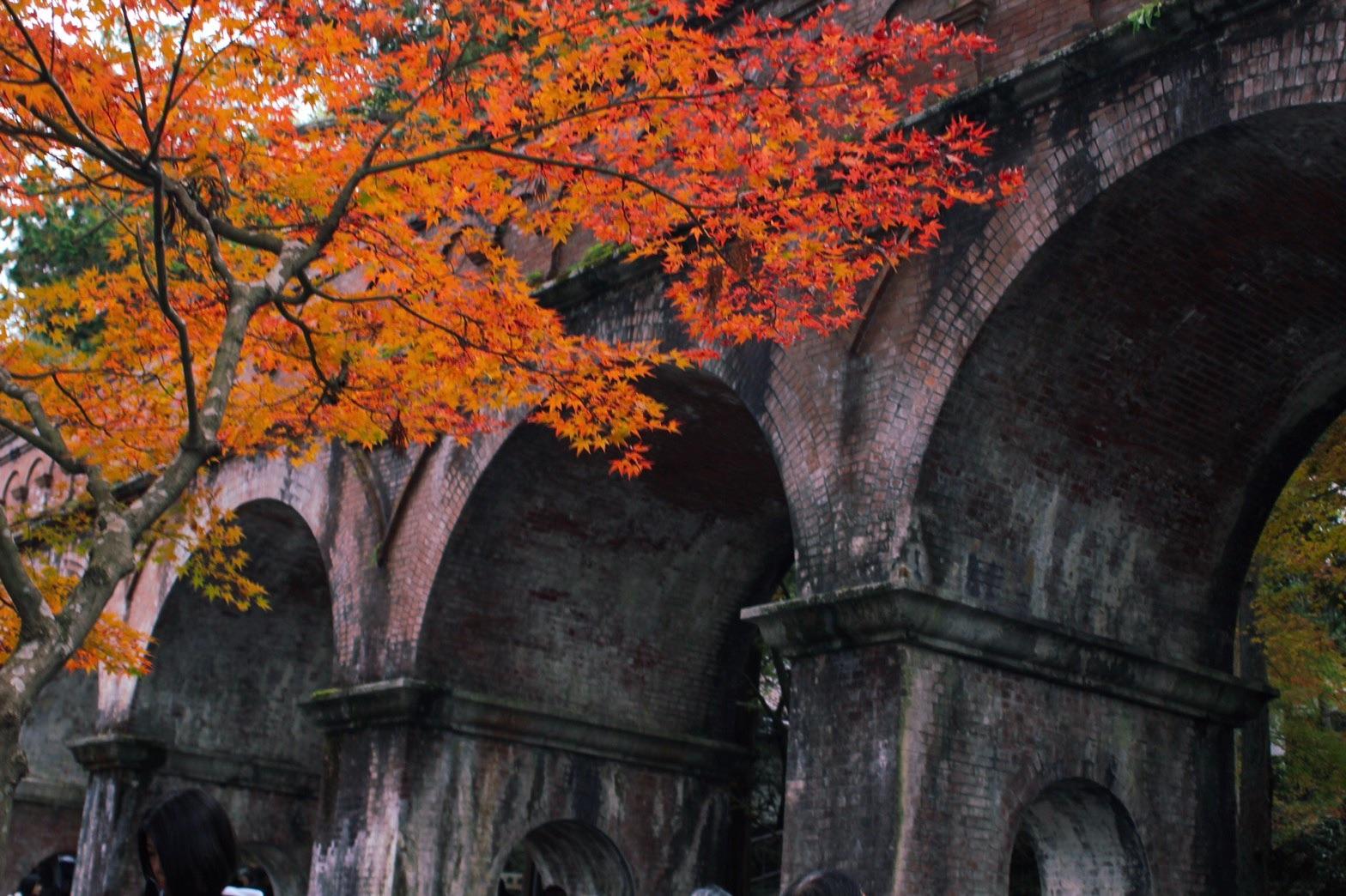 紅葉に染まる南禅寺の水路閣
