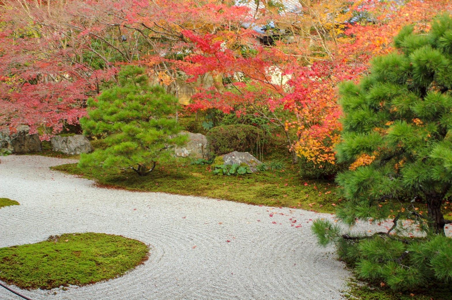 紅葉に染まる南禅寺の中庭