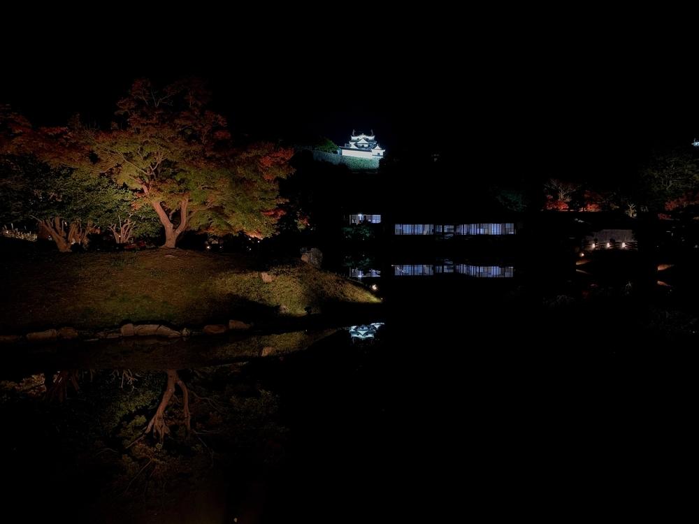 玄宮園ライトアップ