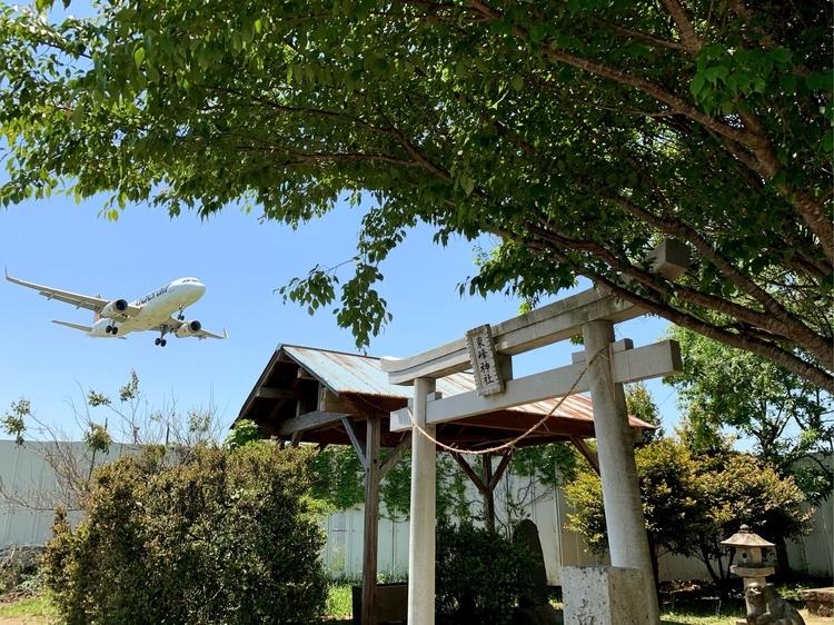 東峰神社のすぐ上を飛ぶ飛行機
