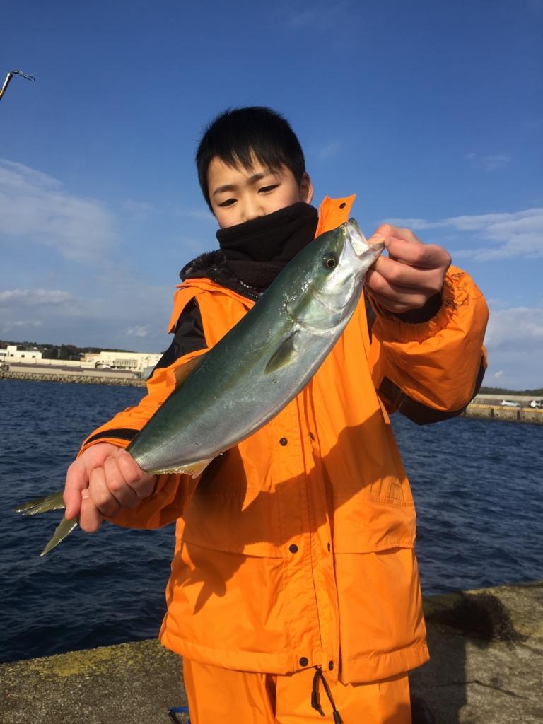 f:id:doriashi19:20170107162031j:plain