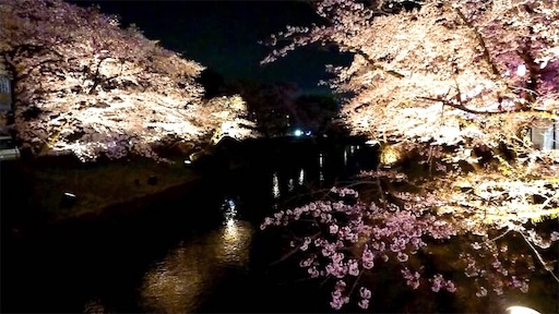 f:id:dorifuto-naoki:20190425222547j:image
