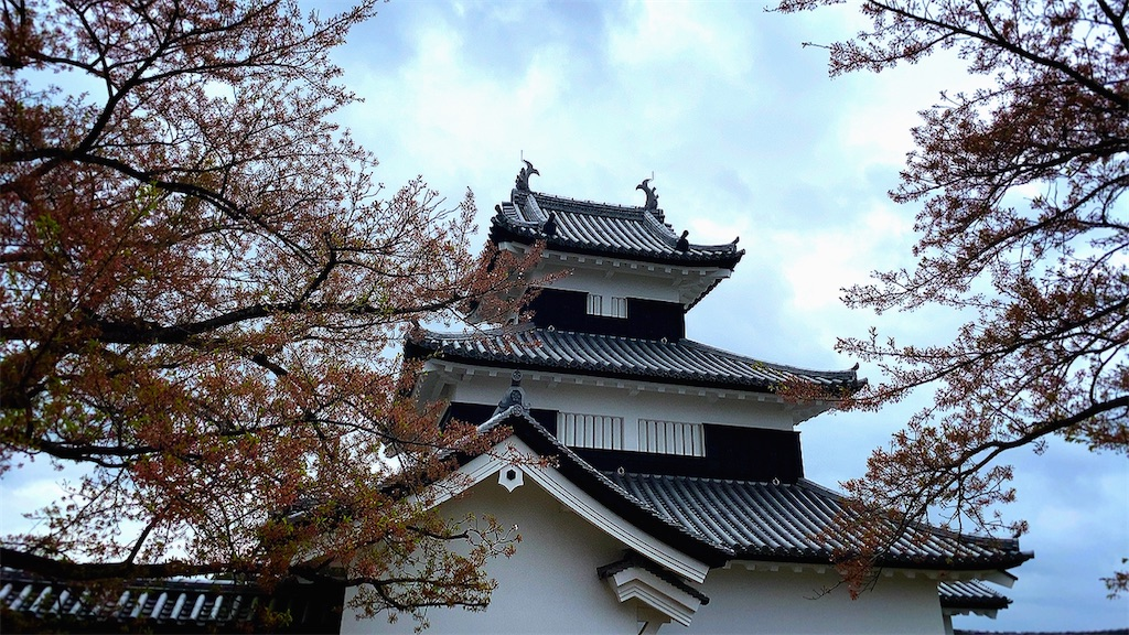 f:id:dorifuto-naoki:20210421233533j:image
