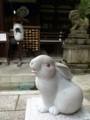 岡崎神社の狛うさぎ阿形
