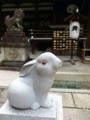 岡崎神社の狛うさぎ吽形