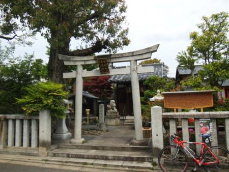 f:id:doroyamada:20130504105328j:image