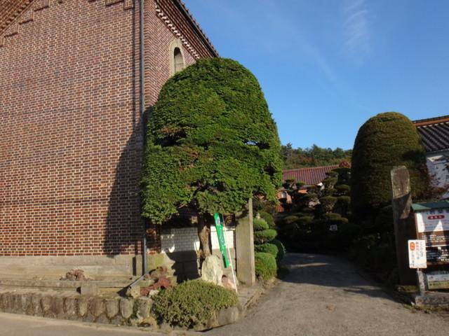 f:id:doroyamada:20161112205637j:image