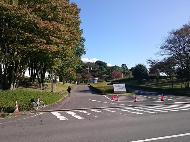 f:id:doroyamada:20161114224958j:image