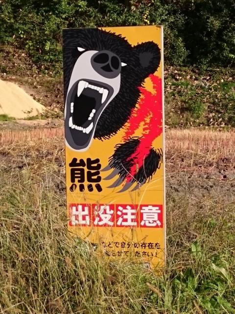 f:id:doroyamada:20161119223737j:image:w400