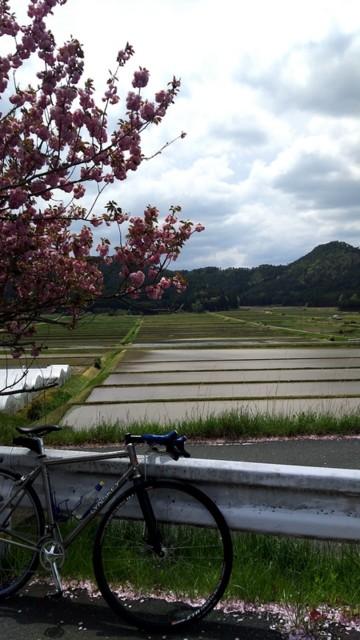 f:id:doroyamada:20170506215106j:image