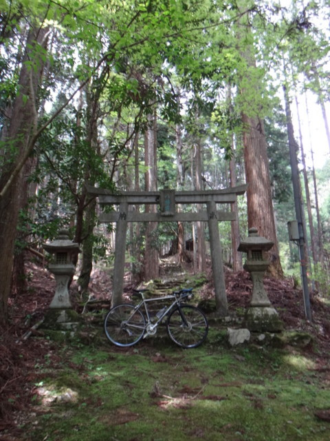 f:id:doroyamada:20170507224914j:image:w400