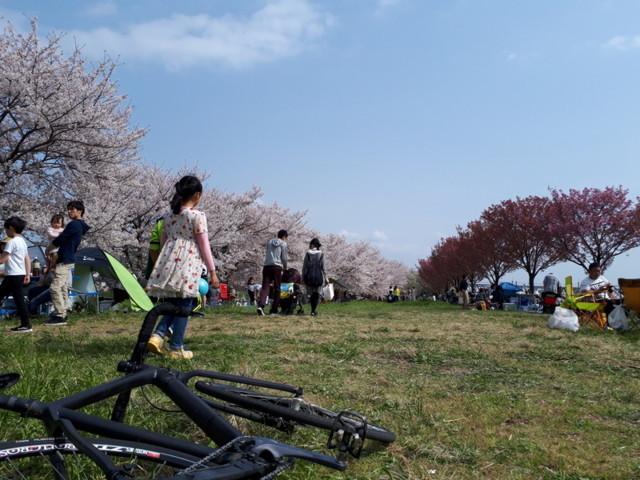 f:id:doroyamada:20180403210802j:image