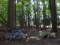 思子淵神社