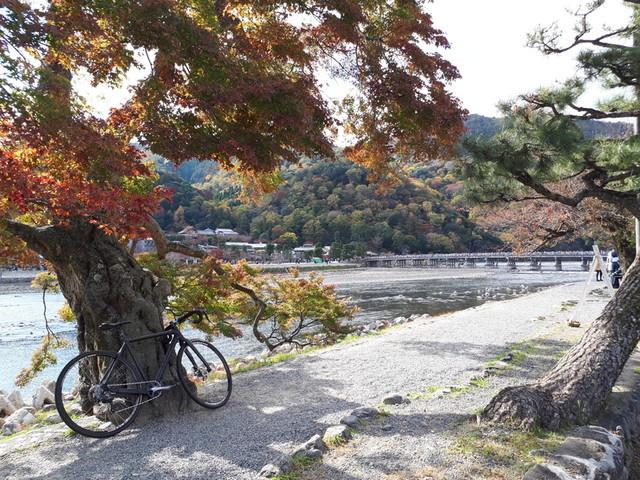f:id:doroyamada:20181124220650j:image