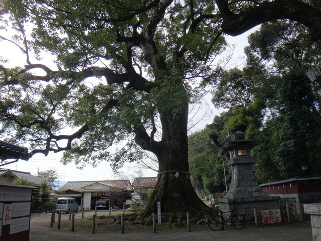 f:id:doroyamada:20190226213924j:image