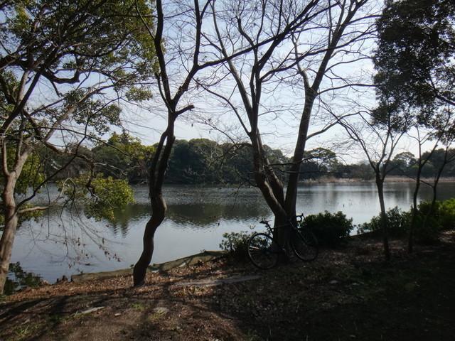 f:id:doroyamada:20190226213936j:image