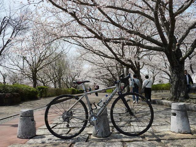 f:id:doroyamada:20190408203509j:image