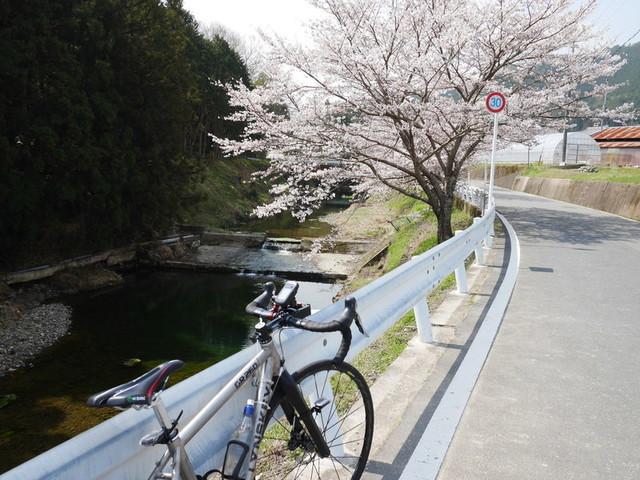 f:id:doroyamada:20190408203543j:image