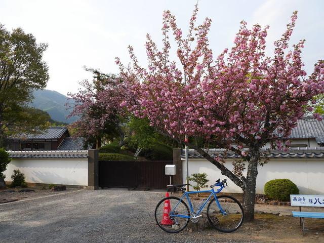 f:id:doroyamada:20190424210721j:image