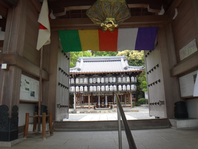 f:id:doroyamada:20190503200535j:image